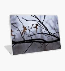 Winter Leaves with Water Drops Laptop Skin