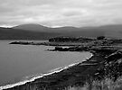A grey day on Mull by SWEEPER