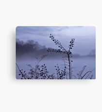 Foggy Winter Botanicals in Landscape Canvas Print