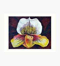 Orchid Arc Art Print