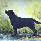 Black Labrador by fi-ceramics