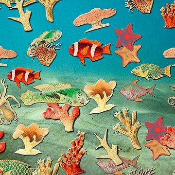 Marine life undersea fish and corals by ACoetzer