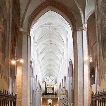 The Turku Cathedral by markku