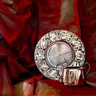 Red and Silver by pucci ferraris