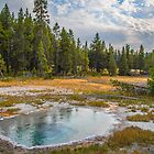 USA. Wyoming. Yellowstone National Park. Shield Spring. by vadim19