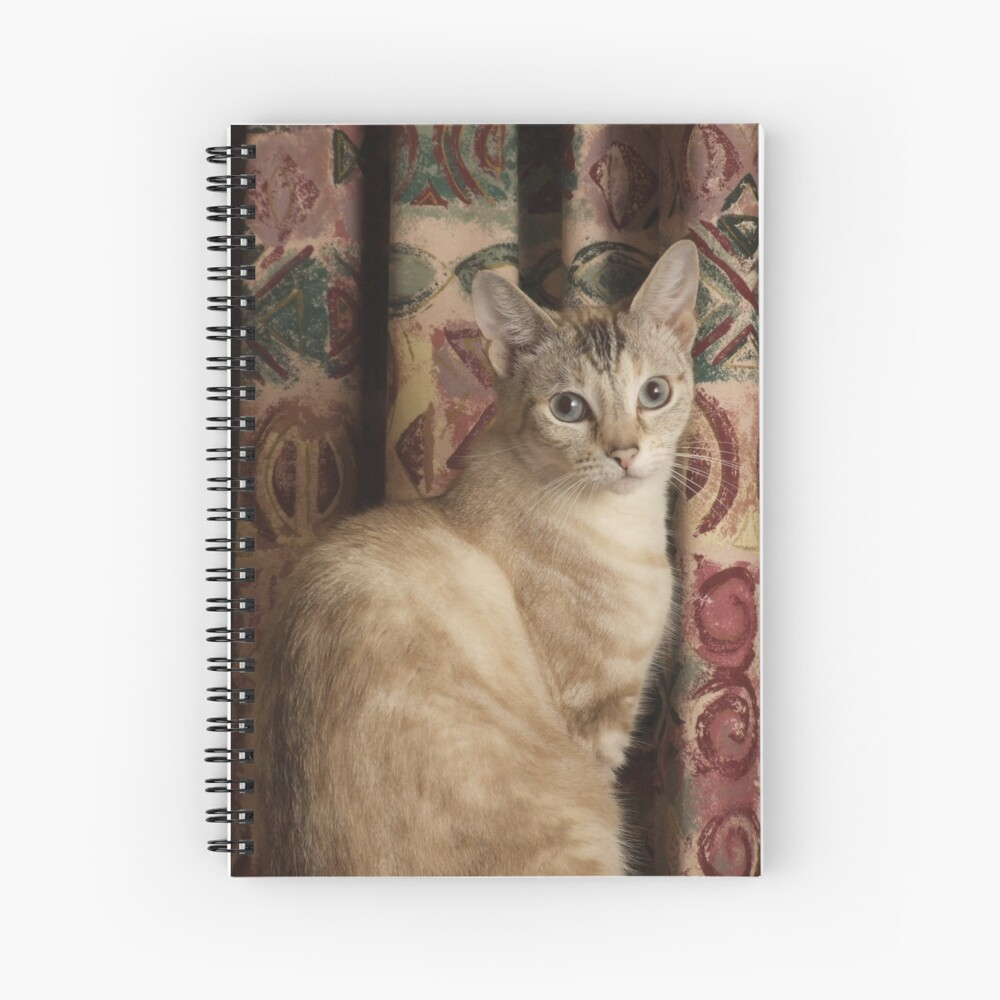 Myst Spiral Notebook