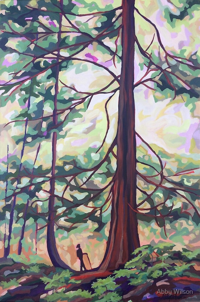 Old Growth by Abby Wilson
