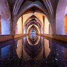 Baths of Maria De Padilla by Alessio Michelini