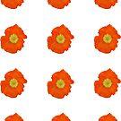 Orange Poppy by STHogan