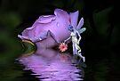 A Fairys World by Elaine Manley