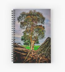 """""""Life and Death"""" Spiral Notebook"""