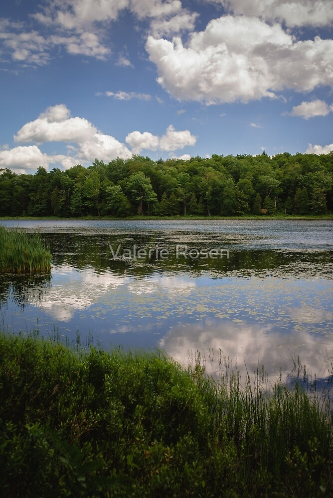 Perfect Day Reflections by Valerie Rosen
