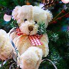 Christmas teddy bear by Vasily