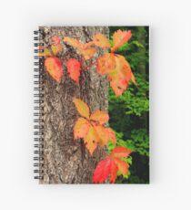 Be Spiral Notebook