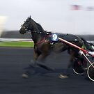 France - Vincennes by Thierry Beauvir