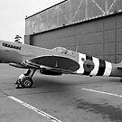 Supermarine Spitfire PR.XI PL965 by Colin Smedley