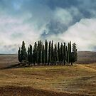 Cloudy afternoon in Toscany by JBlaminsky