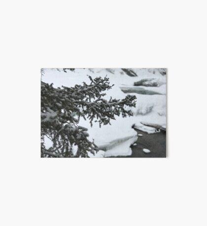 The River Beneath (Banff, Canada) Art Board Print