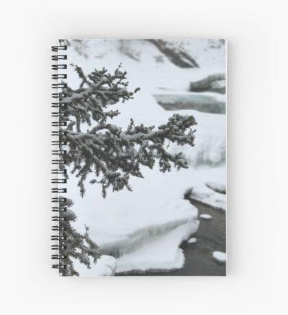 The River Beneath (Banff, Canada) Spiral Notebook