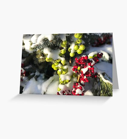 Winter Berries (Banff, Canada) Greeting Card