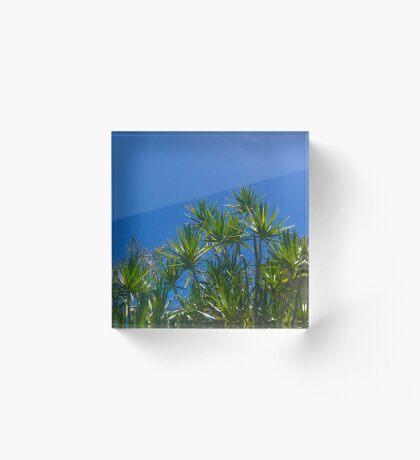 Blue skies above (Peregian Beach, Qld) Acrylic Block