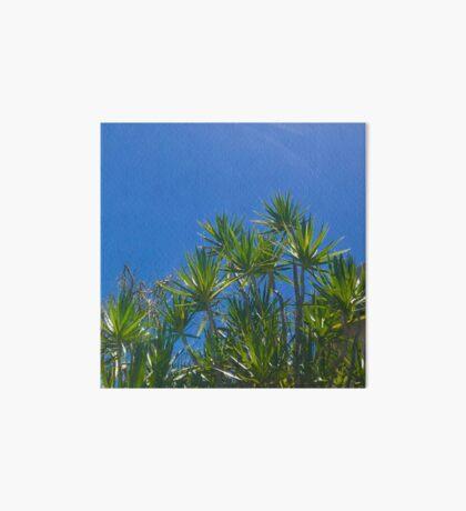 Blue skies above (Peregian Beach, Qld) Art Board Print