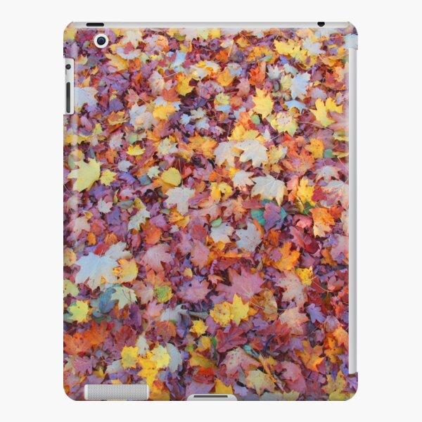 wundervolle, bunte Blätter im Herbst, Baum, Laub, Jahreszeit iPad – Leichte Hülle