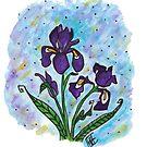 Flower Series 10 - Iris by Loni Edwards