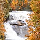 Waterfall and Vibrant Fall Foliage by Southern  Departure