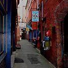 Fan Tan Alley  by TerrillWelch