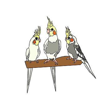 Cockatiels by nolessjess
