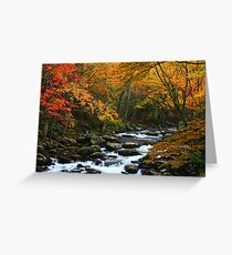 AUTUMN,MIDDLE PRONG LITTLE RIVER Greeting Card