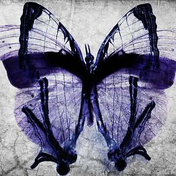 The butterfly Fx by lhandlott