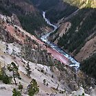 The Grand Canyon Of The Yellowstone I – Yellowstone National Park,  WY by Rebel Kreklow