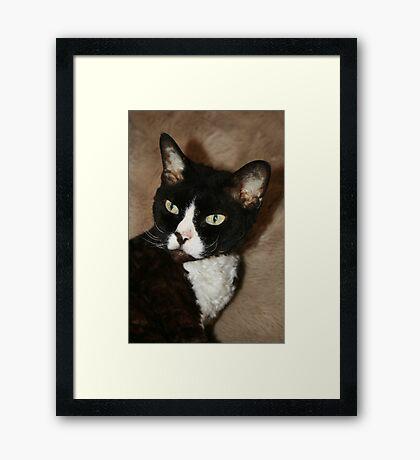 He's my boss Framed Print