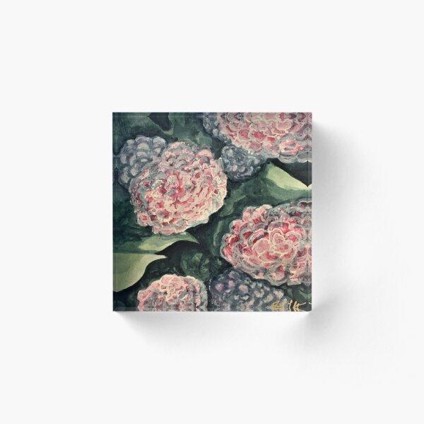 Hydrangeas in Light Acrylic Block