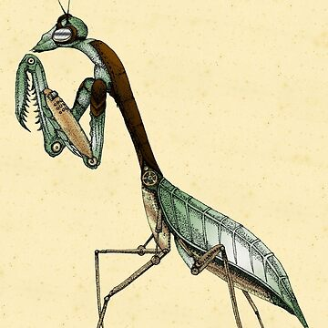 Mantis, Augmented by feralbeagle