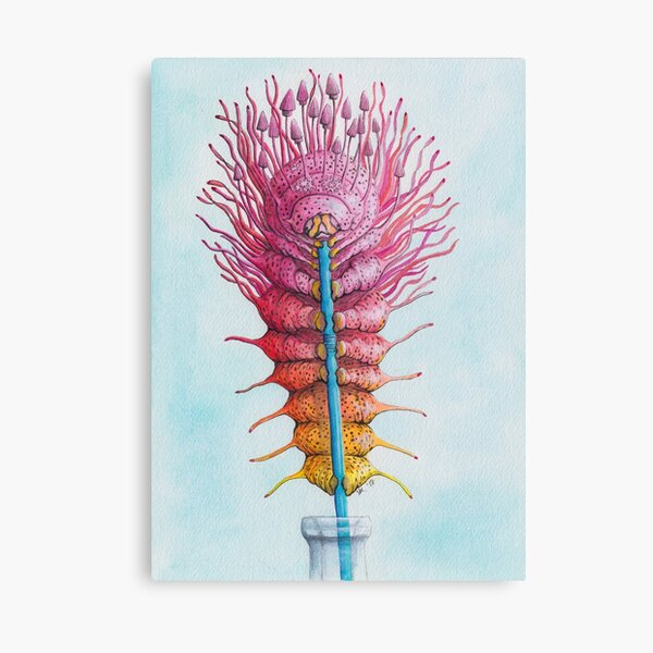 Caterpillar on a Straw Canvas Print