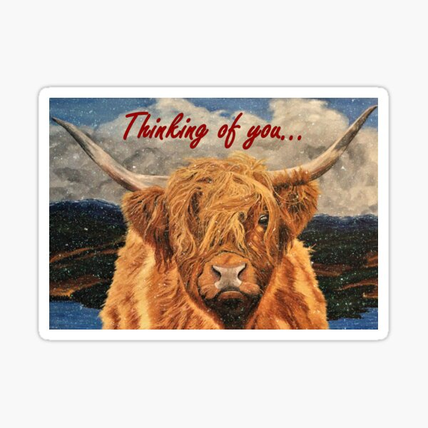 Highland Cow in Early Snow - Thinking of You Card Sticker