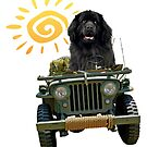 Black Newfie Driving Jeep by Christine Mullis