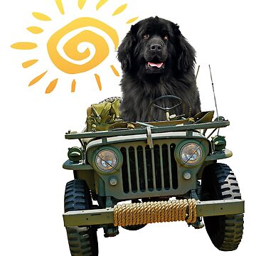 Black Newfie Driving Jeep by itsmechris