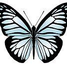 Butterfly by WadZat
