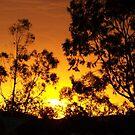Beautiful Sunrise, Alice Springs, NT  by Hellz