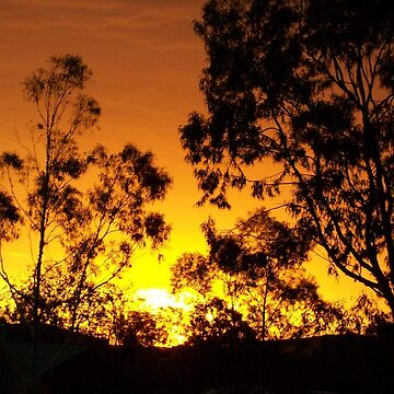 Beautiful Sunrise, Alice Springs, NT  by Hellz