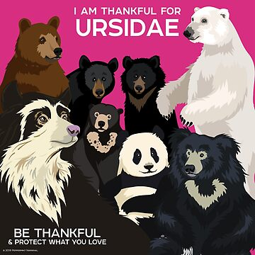 I Am Thankful for Ursidae by PepomintNarwhal