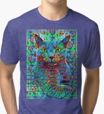 CAT POINT PAINTING Tri-blend T-Shirt