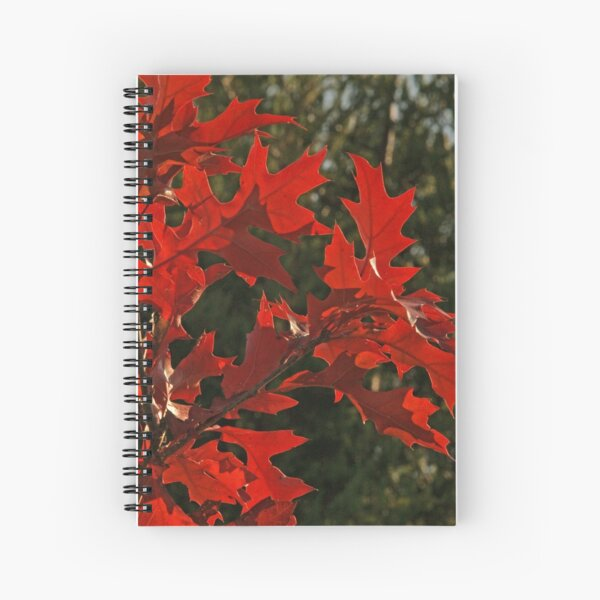 Oak Leaves in Autumn Flame Spiral Notebook