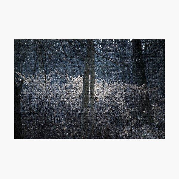 Twilight Fire Photographic Print
