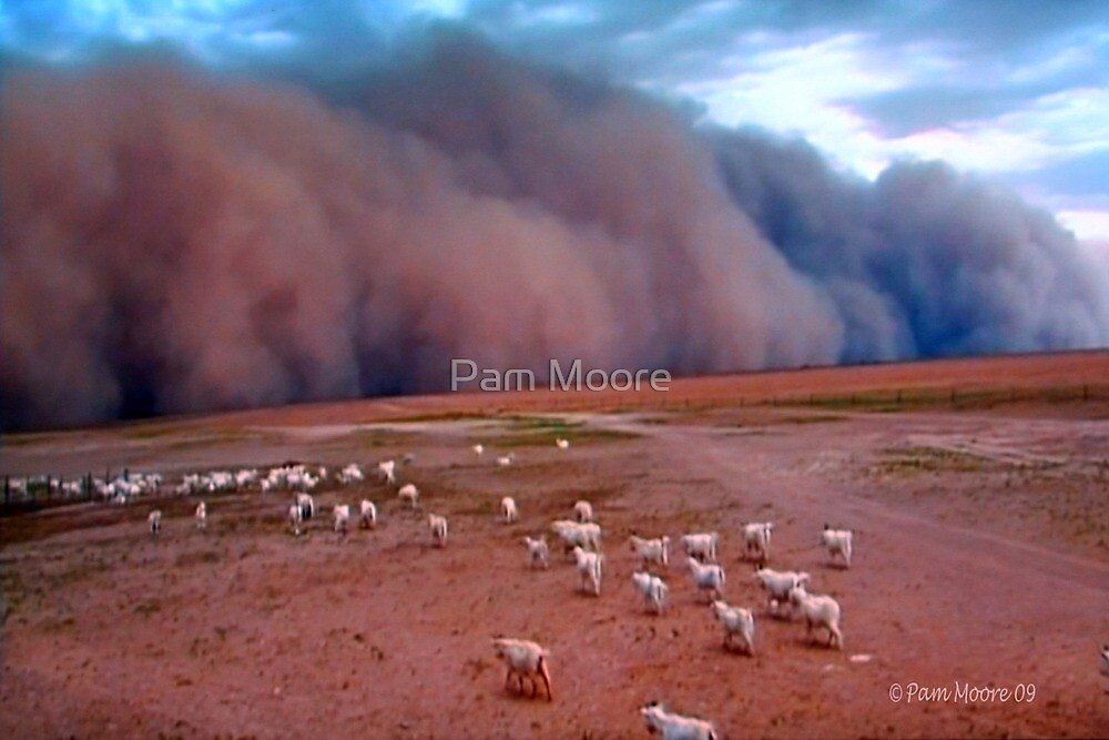 The Sandstorm by Pam Moore