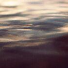 beauty of the ocean by NicNilla